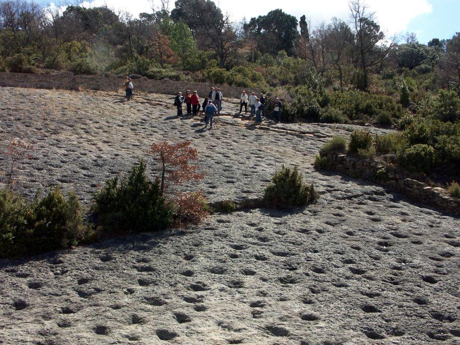 Vue générale du gisement d'ichnites de la Posa.