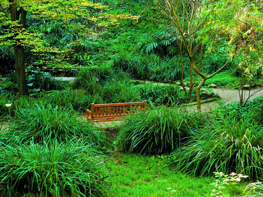 Jardín Botánico HistóricoBarcelona