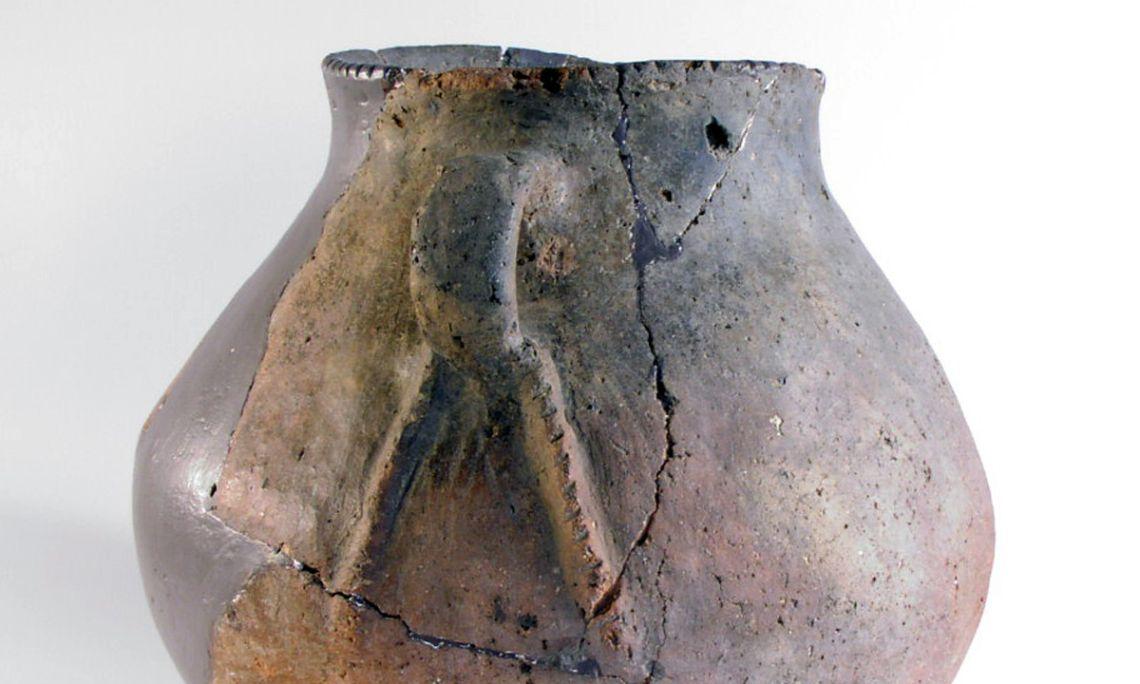 Vas del neolític antic de la cova de Mariver (Martís, Esponellà).