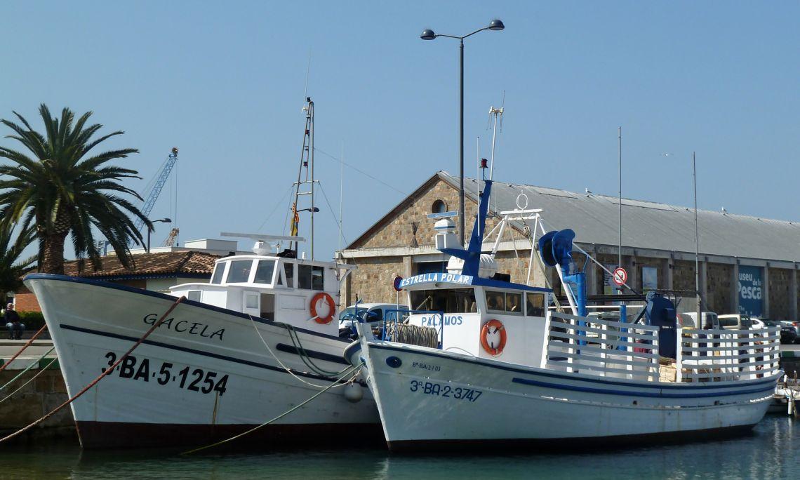 Embarcacions de pesca.