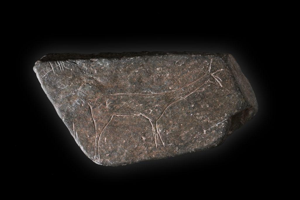 Plaqueta amb cérvola gravada, abric de Sant Gregori (Falset), epipaleolític, c. 8000 aC. Foto: arxiu de l&r