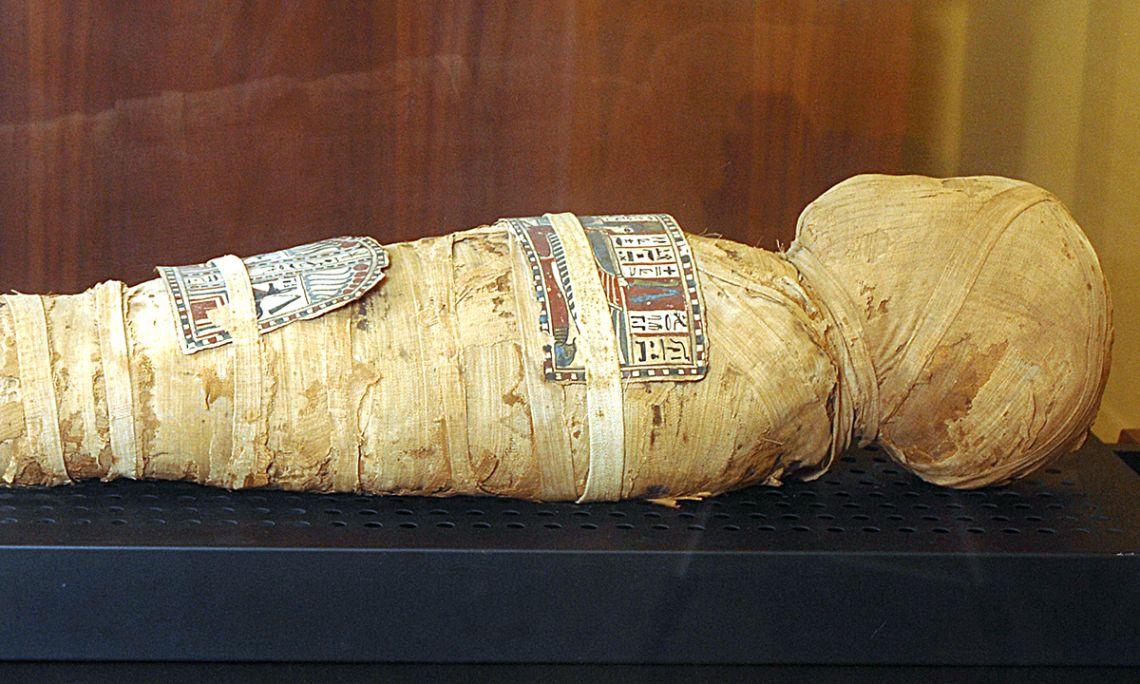 Mòmia egípcia de l'infant Nesi, Imperi nou, provinent de la zona de Tebes, 83 × 19 × 15,5 cm