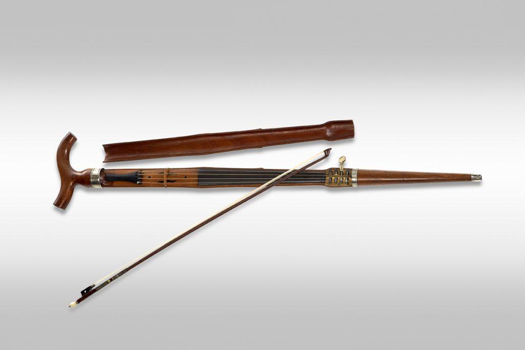 Violon cane MDMB 416© Rafael Vargas