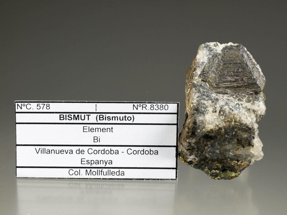 Bismuth,Valencia de Alcántara. Photographie de Josep Rosell.