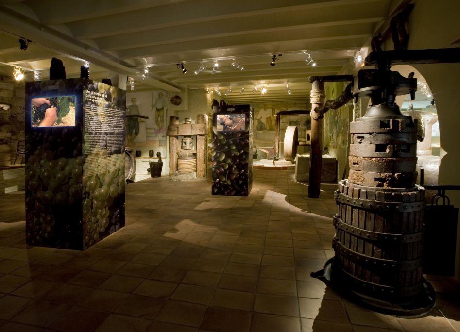 Vista panoràmica de la sala dedicada als tres grans conreus del país: vinya, blat i olivera.