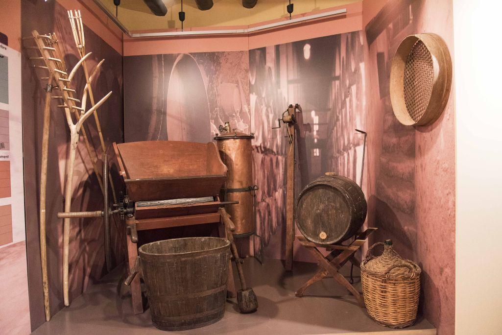 Conjunt d'utensilis i maquinària utilitzats per a la producció del vi, conreu principal de la zona