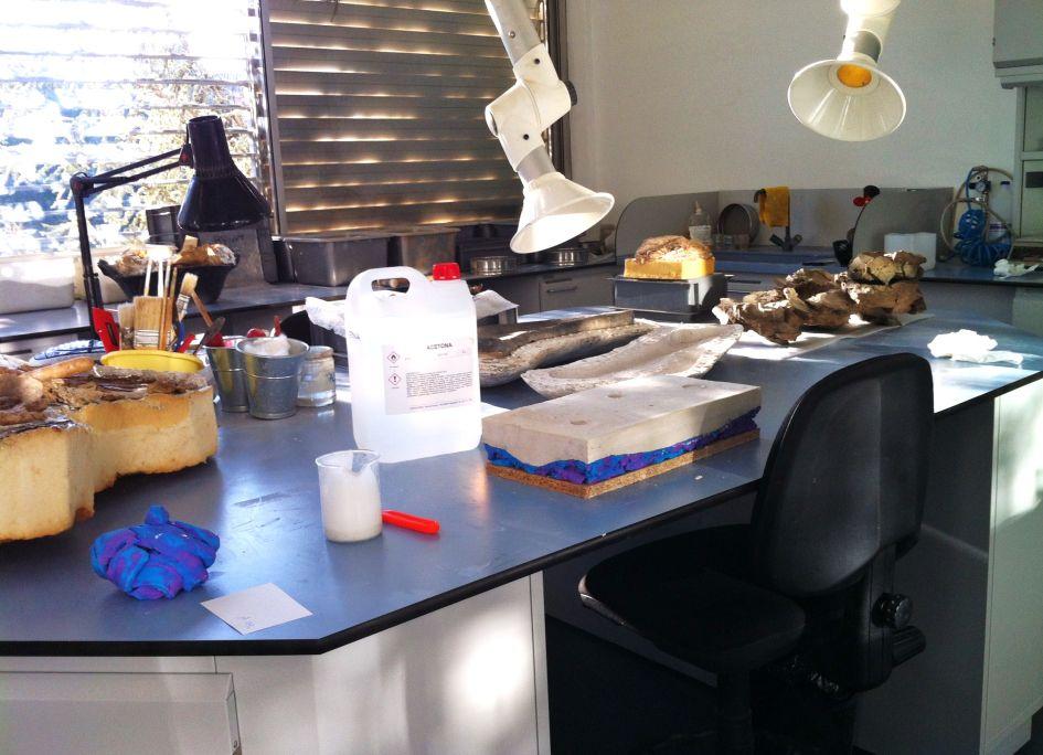 Vista del laboratorio de preparación del centro