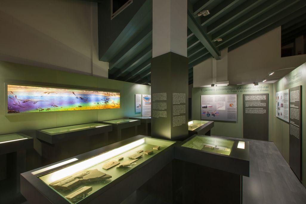 Sala de paleontologia on s'exposa la col·lecció de fòssils del jaciment d'Alcover-Mont-ral.