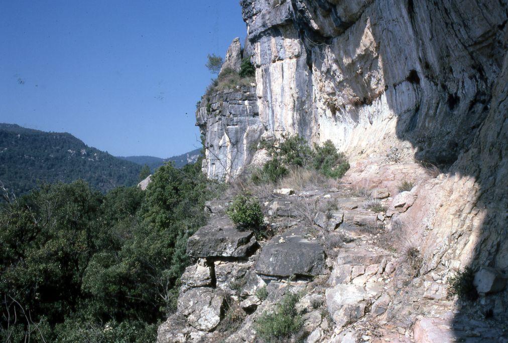 Història dels descobriments de l'art rupestre a les muntanyes de Prades.