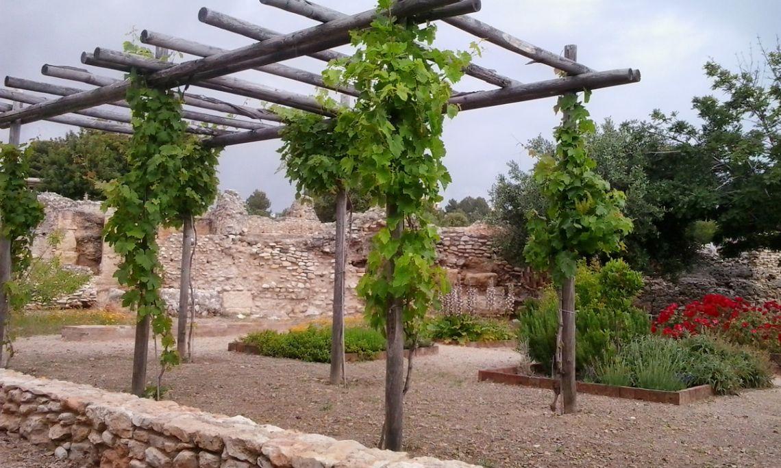 Vista de l'hortus experimental, amb la pèrgola amb parres i els parterres amb diferents espècies&a