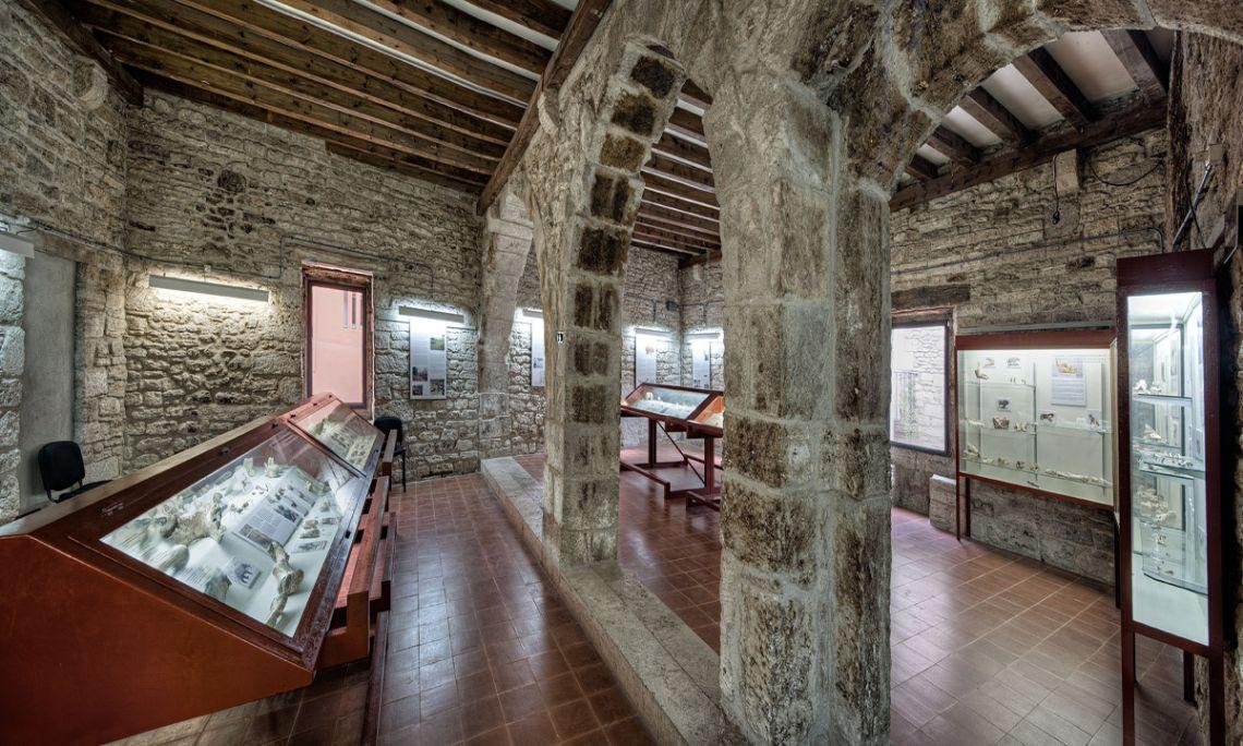 La sala de Paleolític (Arqueoxarxa, Josep Casanova)