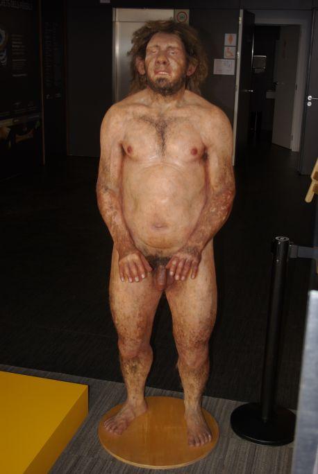 Reconstrucción de un hombre neandertal