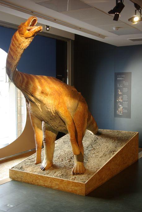 Reconstrucció d'un titanosaure trobat a Coll de Nargó, i excavat i estudiat pels investigadors del grup de recerca del Mesozoic