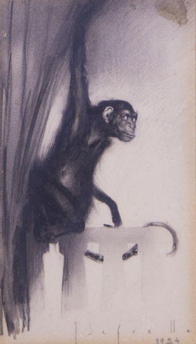 Mono  1924 Dibuix a llapis grafit sobre paper C ol·lecció particular