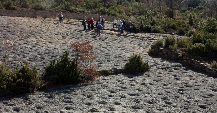 <p>Vista general del yacimiento de icnitas de la Posa.</p>