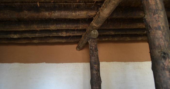 <p>Detall del sostre de la casa de l'ibèric ple</p>