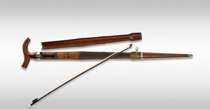 <p>Walking cane violin&nbsp;MDMB 416&nbsp;&copy; Rafael Vargas</p>