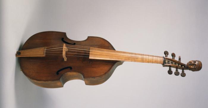 <p>Viola da gamba&nbsp;MDMB 412&nbsp;&copy;Gabriel Serra</p>