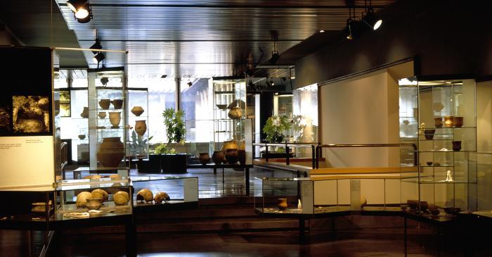 <p>Vue g&eacute;n&eacute;rale de la salle de la pr&eacute;histoire, avec les diff&eacute;rents mat&eacute;riaux des fouilles.</p>