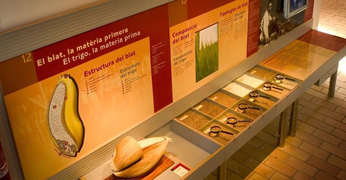 <p>Coneix les caracter&iacute;stiques del blat i el que cal saber per fer un bon pa. &copy;Pep Botey.</p>