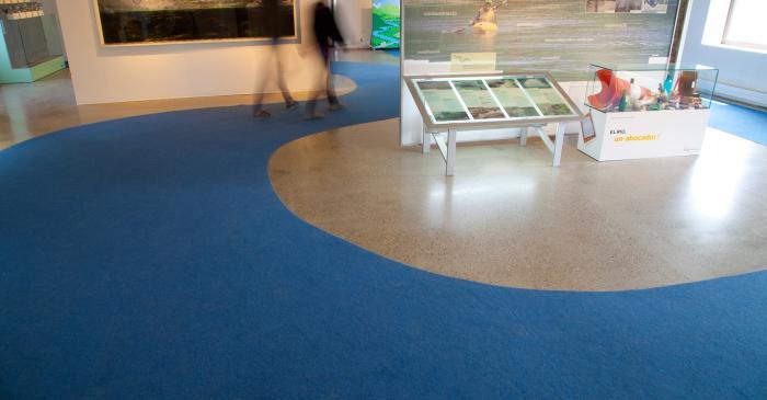<p>Aquarium avec les esp&egrave;ces autochtones du Ter</p>