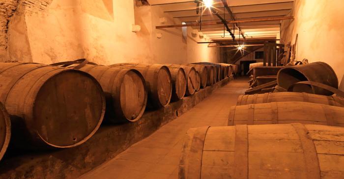 <p>Wine cellar at Can Miravitges estate. Photo by Antonio Guill&eacute;n, Museum of Badalona.</p>