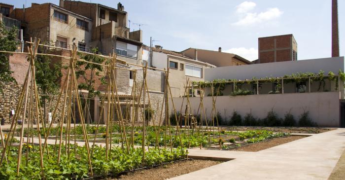 <p>El huerto ecol&oacute;gico del museo, con la noria y el lavadero al fondo de la imagen</p>