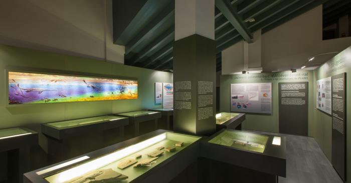 """<p><span style=""""font-weight: 400;"""">Sala de paleontologia on s&rsquo;exposa la col&middot;lecci&oacute; de f&ograve;ssils del jaciment d&rsquo;Alcover-Mont-ral.</span></p>"""