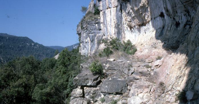 <p>Histoire des découvertes de l'art rupestre dans les montagnes de Prades</p>