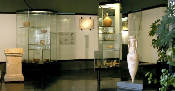 <p>Vista general de la Sala del Mundo Romano, situada en el sobreclaustro de la catedral de Solsona</p>