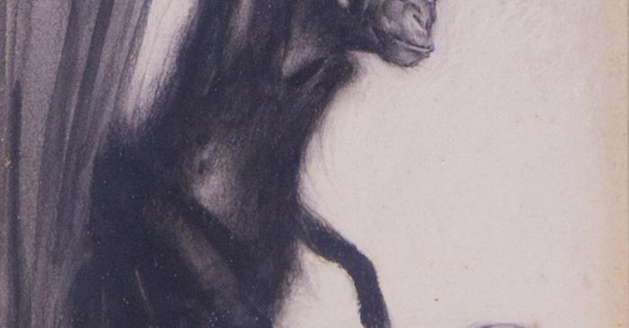 <p><em>Mono </em></p> <p>1924</p> <p>Dibuix a llapis grafit sobre paper C</p> <p>ol&middot;lecci&oacute; particular</p>