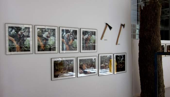 <p>Espace de travail artisanal au sein de l&rsquo;exposition permanente. &Agrave; gauche, vitrine de couteaux &agrave; d&eacute;masclage, &agrave; d&eacute;couper en lames, &agrave; bouchon.</p>
