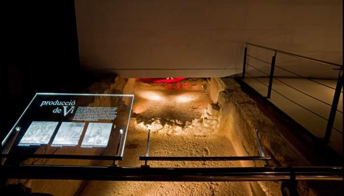 <p>Dip&ograve;sits de vi conservats a la Casa dels Dofins de Badalona, segle I aC.&nbsp;Museu de Badalona / Antonio Guill&eacute;n &copy;</p>