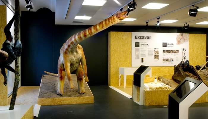 <p>Reconstrucci&oacute; d&rsquo;un titanosaure</p>