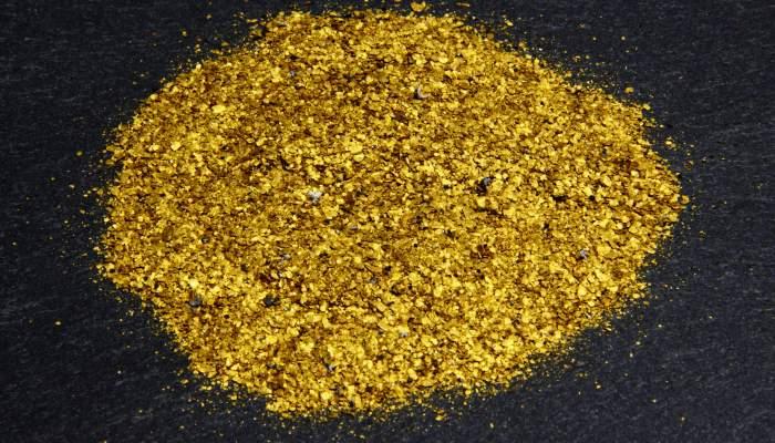 <p>Pepitas de oro extra&iacute;das del r&iacute;o Segre a la altura del t&eacute;rmino de Balaguer.</p>