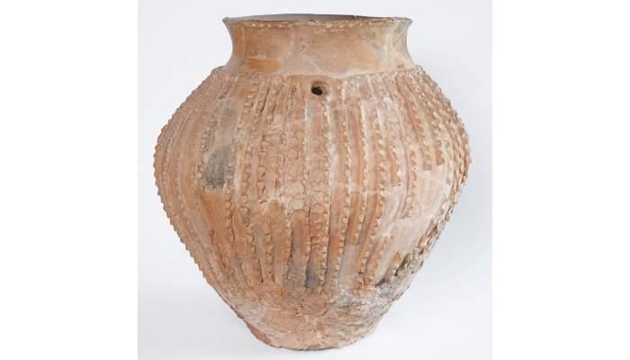 <p>Ceramic cup, Neolithic, Cova del Segre (barony of Rialb)</p>