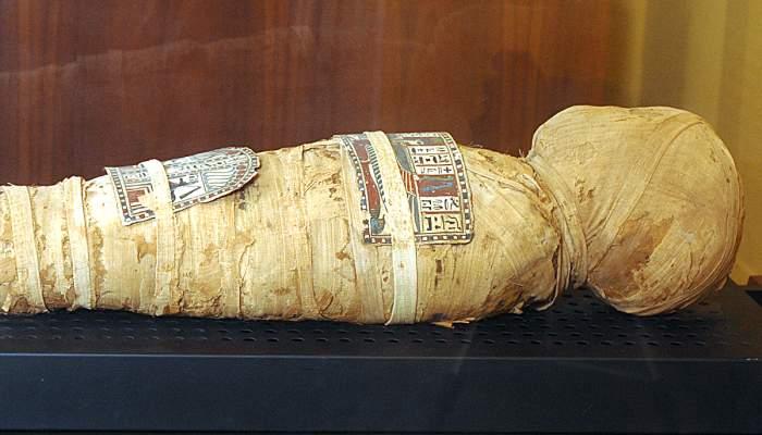<p><em>M&ograve;mia eg&iacute;pcia de l&rsquo;infant Nesi</em>, Imperi Nou, provinent de la zona de Tebes, 83&times;19&times;15,5 cm.</p>