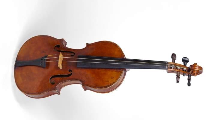 <p>Viol&iacute; MDMB 851&nbsp;&copy; Rafael Vargas</p>
