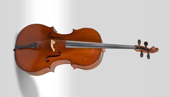 <p>Violoncel Joan Guillam&iacute; (Barcelona, 1756). &copy; Rafael Vargas</p>