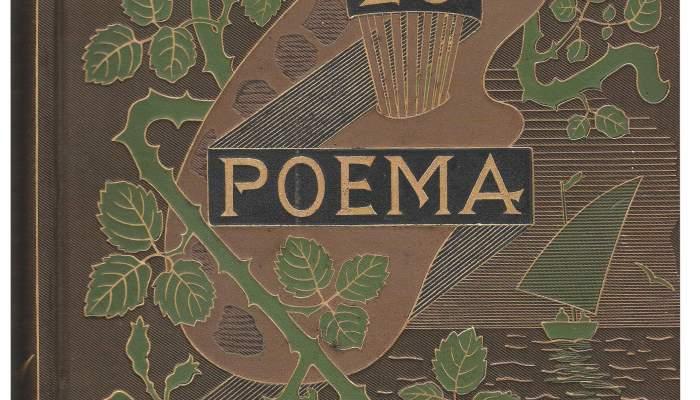 Cubierta de Lo poema del cor