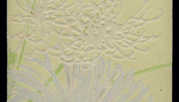 Cubierta de Crisantemes