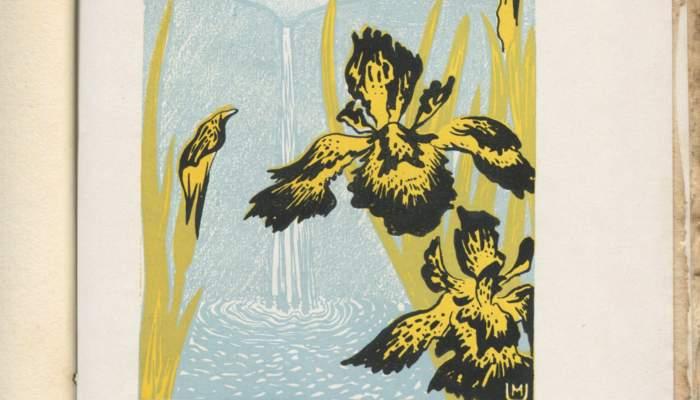 Reproduction du chapitre «A les Cascades» du livre Oracions